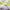 Pachet cort RAZZLE DAZZLE cu salteluta patchwork